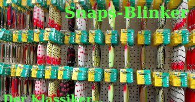 Snaps-Blinker